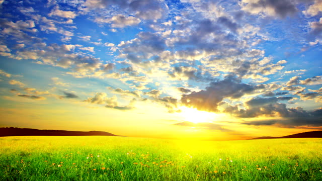 Spring Nature. Sunrise. Morning landscape. Nature is waking up. brightly lit stock videos & royalty-free footage
