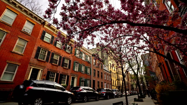 봄 뉴욕 거리-벚꽃 개화 - 고층 건물 스톡 비디오 및 b-롤 화면