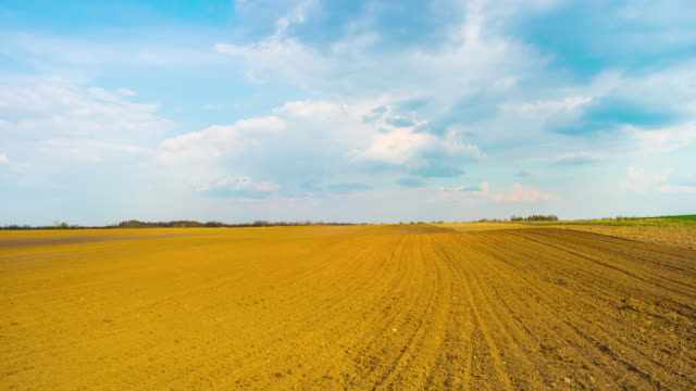 Spring plowed field, panoramic time-lapse video