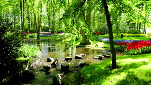 公園の春の池 - キューケンホフ公園点の映像素材/bロール