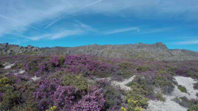 Springtime Sierra Landscape in Portugal