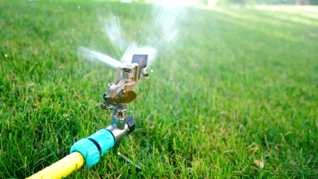 vídeos de stock, filmes e b-roll de instalações de irrigação de aspersão no gramado. aspersor de pulverização de água sobre a grama verde, sistema de irrigação no parque. slow motion - sem cultivo