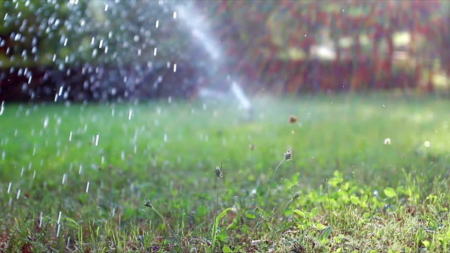 Sprinkler on sunset