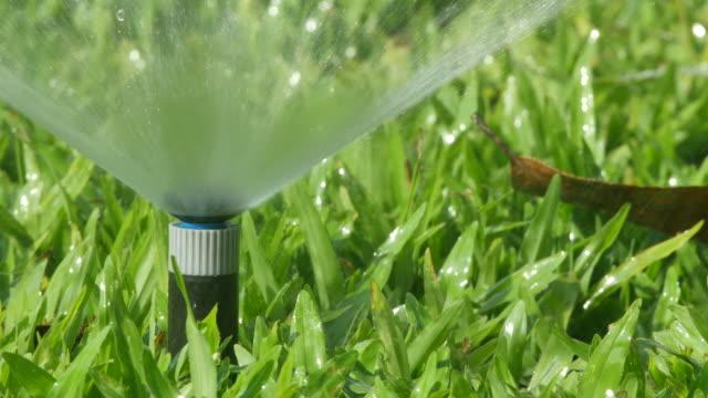 sprinkler spray water on the lawn