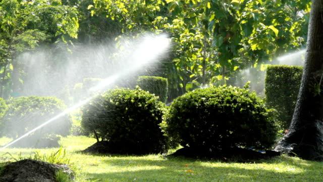 Arroseur automatique eau dans le jardin - Vidéo