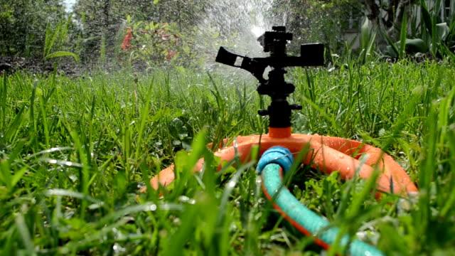 sprinkler watering lawn video