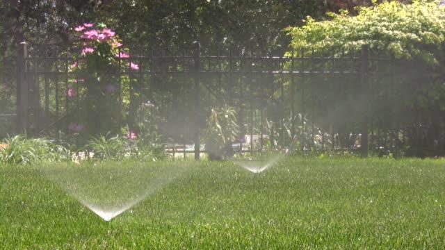 Extincteurs automatiques. Arroseur automatique-Agriculture pulvérisation d'eau sur l'arrière cour Vert herbe. - Vidéo