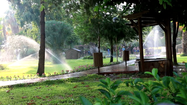 Sprinklers showering lawn video