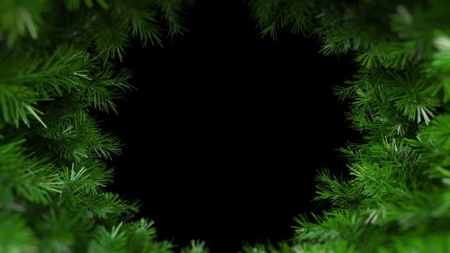 grangren i rörelse runt axel rotera på svart bakgrund hd 1080 - christmas frame bildbanksvideor och videomaterial från bakom kulisserna