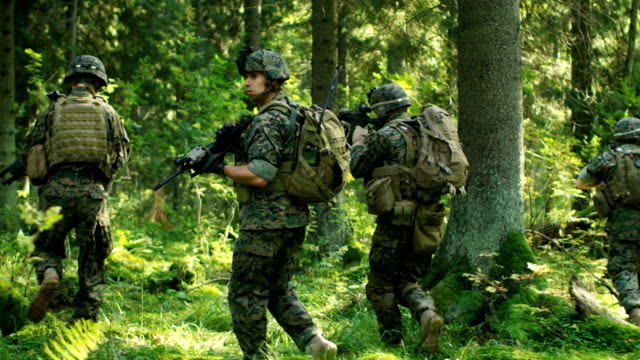 vídeos de stock e filmes b-roll de squad of five fully equipped soldiers in camouflage on a reconnaissance military mission, rifles in firing position. they're moving in formation through dense forest. following back view shot slow motion. - fuzileiro naval