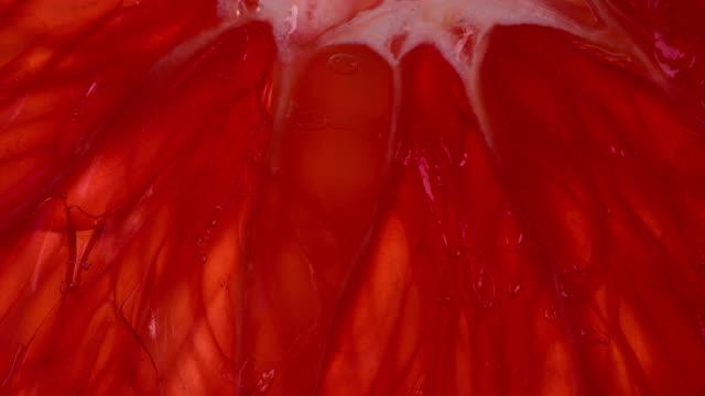 vidéos et rushes de squeeze pamplemousse lobule - pamplemousse