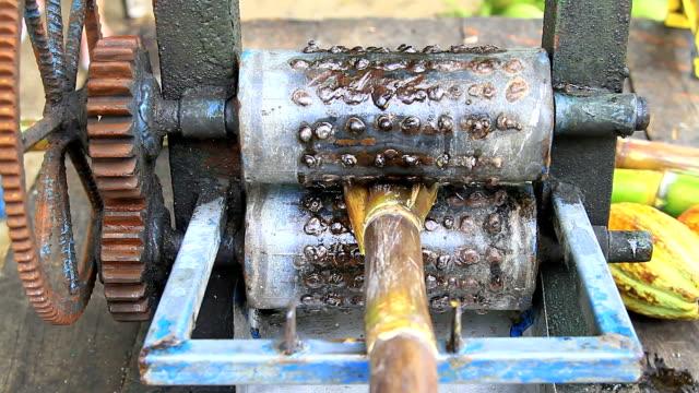 Squeeze machine sugarcane,one Squeeze machine sugarcane stick plant part stock videos & royalty-free footage