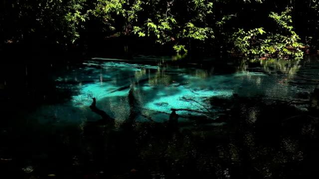 Sra Morakot Blue Pool in jungle, Krabi, Thailand video