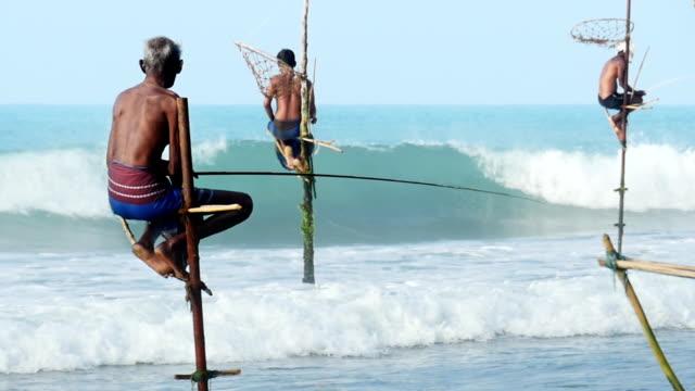 vídeos de stock e filmes b-roll de câmara lenta: sri lanka weligama pau pescadores - sri lanka
