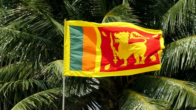 Sri Lankan flag slow motion against coconut tree Sri Lankan flag slow motion against coconut tree. sri lankan culture stock videos & royalty-free footage