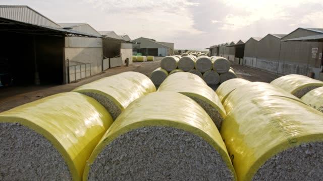 högar av bomulls balar i stor skala bomulls gin efter skörd - cotton growing bildbanksvideor och videomaterial från bakom kulisserna