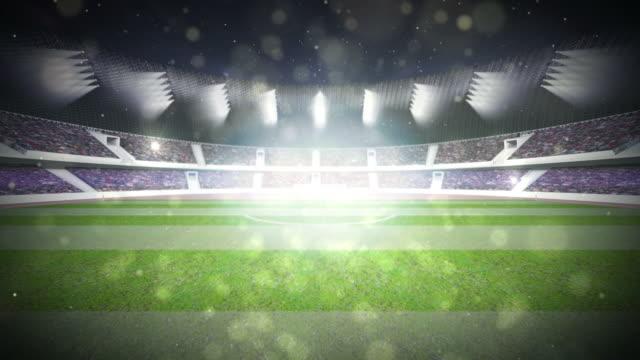 stadium video