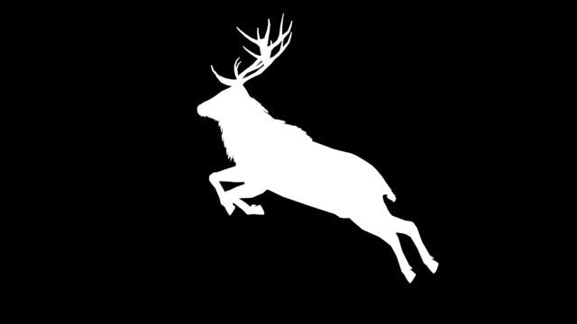 Stag Jumping Silhouette (Loopable) video