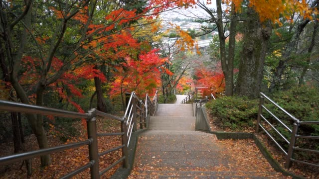 stair way at Chureito Pagoda Fujiyoshida Yamanashi in japan, maple tree in autumn season.