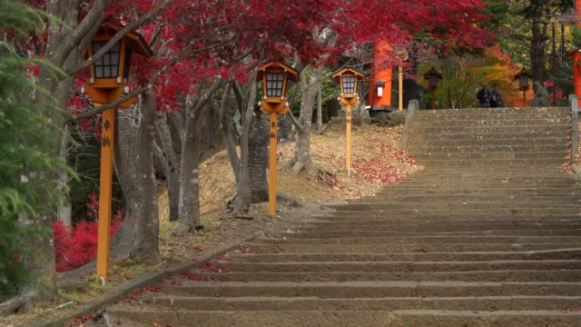 stair way at Chureito Pagoda Fujiyoshida Yamanashi in japan, maple tree in autumn season. video