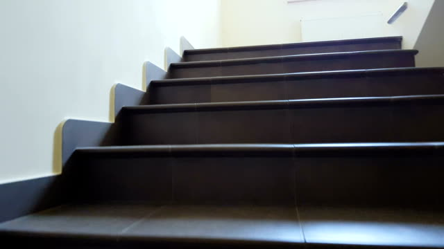 Stairs in office building, dog pov, evacuation, architecture, emergency exit Stairs in office building, dog pov, evacuation, architecture, emergency exit staircases stock videos & royalty-free footage