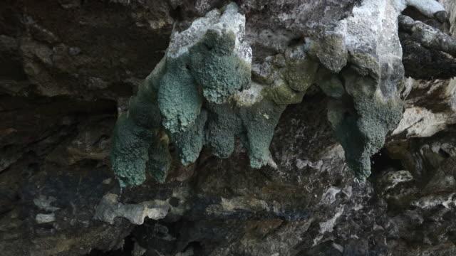 Stalaktiten hängen von Kalkstein Karst Wand Thailand – Video