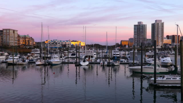 Stamford Connecticut Harbor Stamford is a city in Fairfield County, Connecticut with a population of 125,109, making it the third largest city in the state. Stamford has one of the largest concentrations of corporations in the nation. connecticut stock videos & royalty-free footage