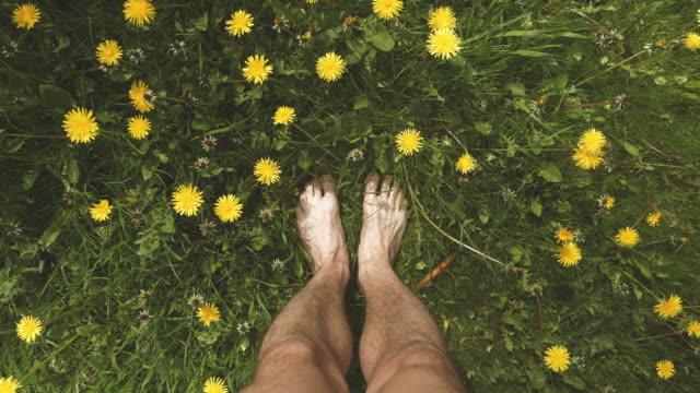 standing barefoot among dandelion - scalzo video stock e b–roll