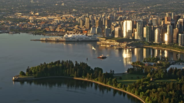 AERIAL Stanley Park and city of Vancouver in early morning sun Aerial shot of the Stanley Park and Downtown Vancouver in early morning sun. Shot in Canada. vancouver canada stock videos & royalty-free footage
