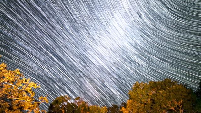 vídeos y material grabado en eventos de stock de senderos de star y milky way sobre grandes tress en texas skies from state park - estrella del norte
