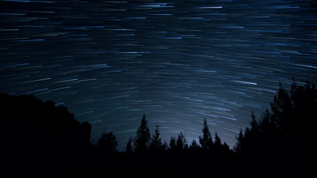 Star Trails - Night Sky Time Lapse with Tree Silhouette video