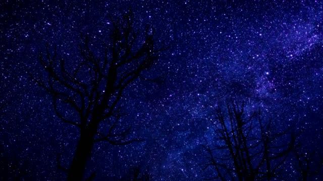 Starry Night Sky Time Lapse video