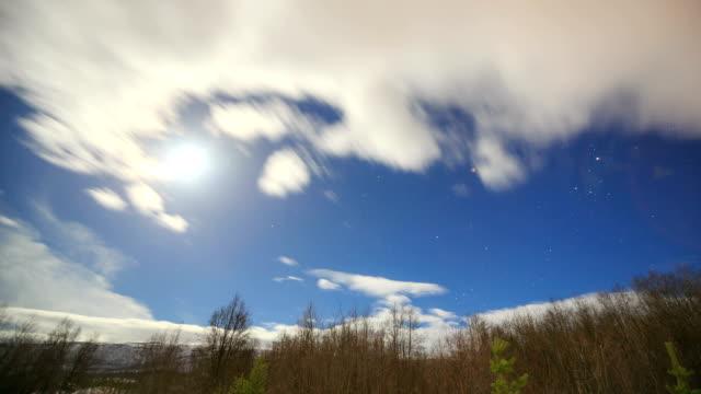 stars trail time lapse in pine forest with full moon - norrbotten bildbanksvideor och videomaterial från bakom kulisserna