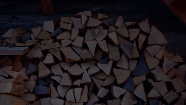 static shot of cut wood in a pile - styria filmów i materiałów b-roll