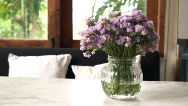 statice flower in vase - vídeo