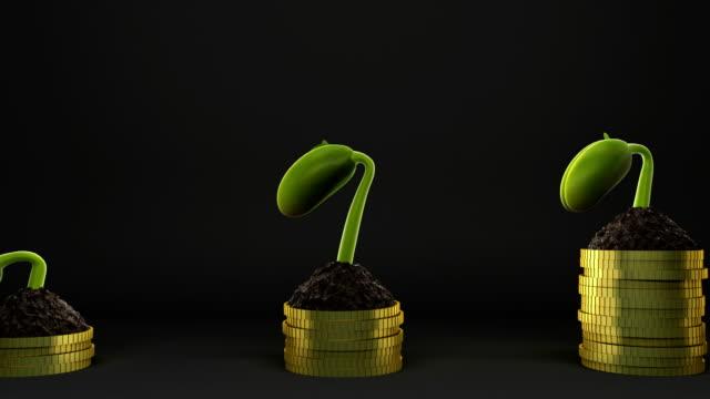Statistics concept.Growing financial charts Seedling growing. germinating bean 4K. video