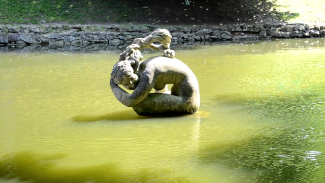 Statue in a pond. video
