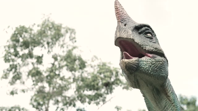 statues of real dinosaur species are in the park, which is displayed to the public, children can learn in this place. - dinosaur stock videos and b-roll footage
