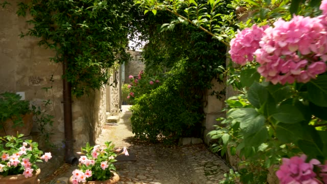 Steadicam shot of narrow paved street with greenery. Lacoste, France. 4K, UHD