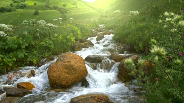 在山裡用晶瑩的水拍攝的斯泰迪卡姆河。uhd - 溪 個影片檔及 b 捲影像