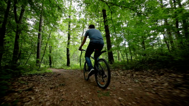 steady cam view of man riding bycicle on forest road - percorso per bicicletta video stock e b–roll