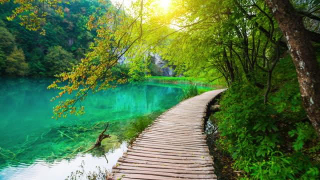 steadycam shot of a boardwalk over an idyllic lake in plitvice lake national park in croatia - национальный парк плитвицкие озёра стоковые видео и кадры b-roll