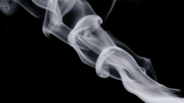 steam from hot on isolated background, slow motion - sigaro video stock e b–roll
