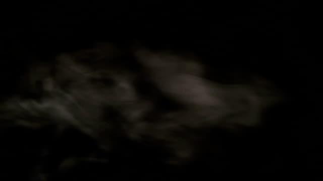 Steam on black background video