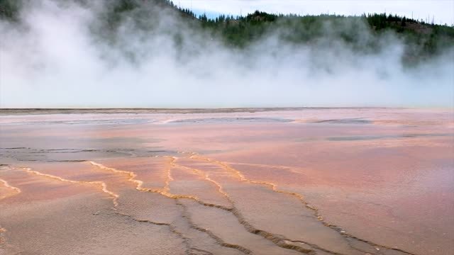 Steam over a volcanic lake in Yellowstone Park.