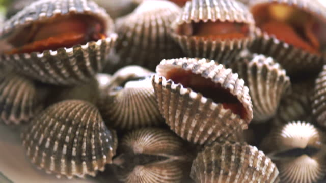 steamed blanched cockles - immergere video stock e b–roll