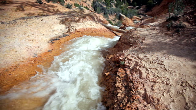 steaming creek in red earth at Bryce canyon video