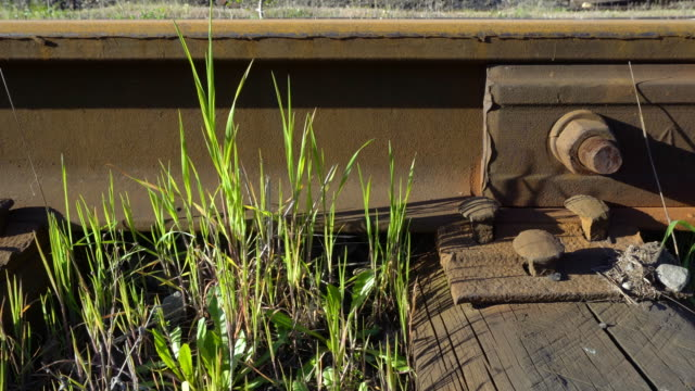 Steel rails bolted down to wooden railroad ties. video