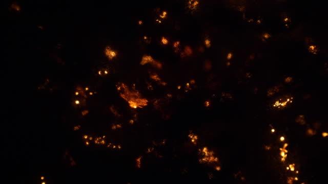 çelik yün yanan arka plan - demir stok videoları ve detay görüntü çekimi