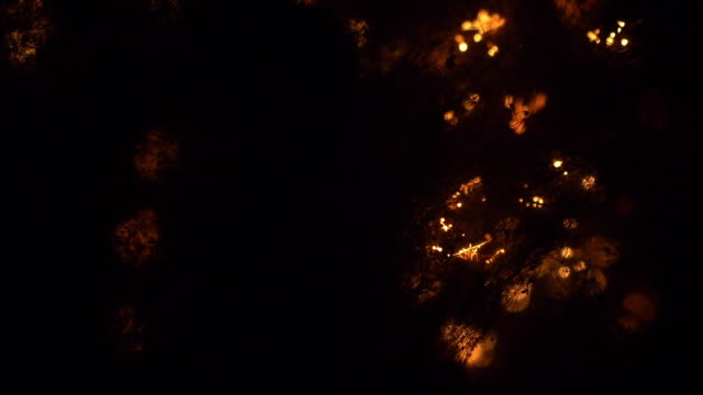 Steel Wool Burning Background video